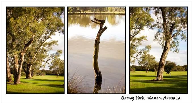 Garveypark_3